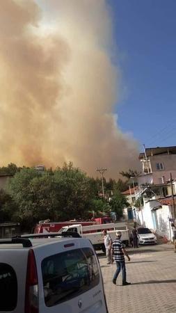 Bozdoğan sınırında yangın yeniden başladı