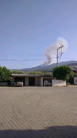 Karacasu Alemler'de de yangın başladı