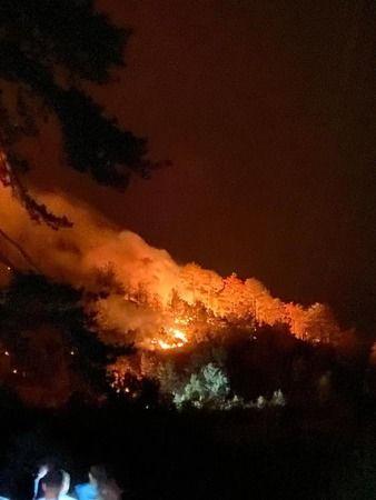 AK Parti'li Savaş yangın bölgesinde