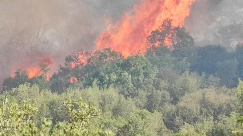 Yenipazar'da Başkan Erden'den 'yangın' açıklaması