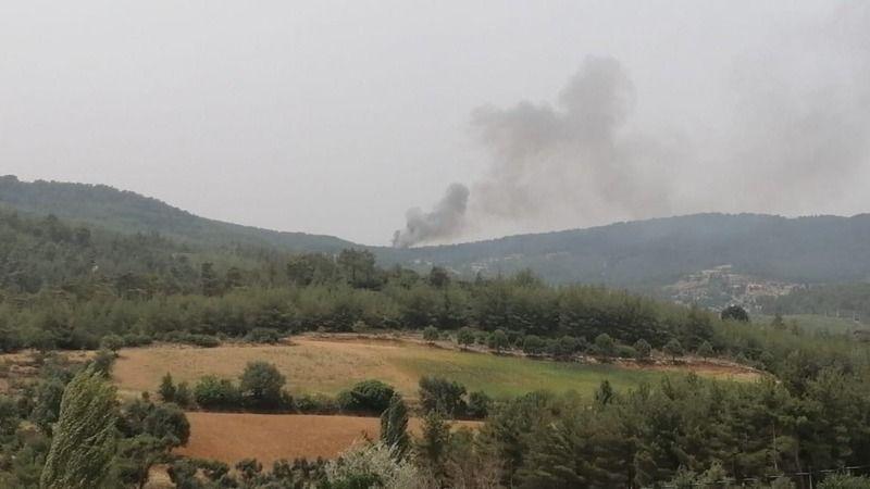 Aydın'da bir yangın daha