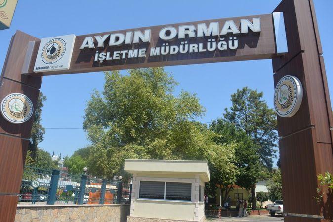İşte Aydın'daki yangınların bilançosu!