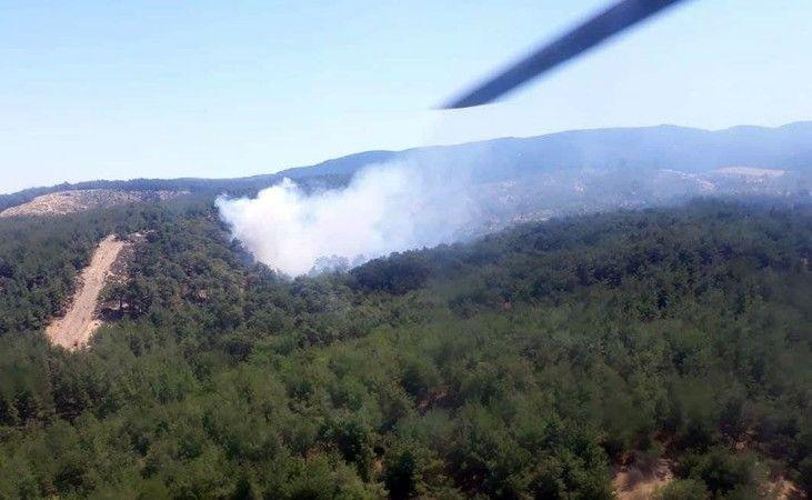 Aydın'da iki farklı noktada orman yangını