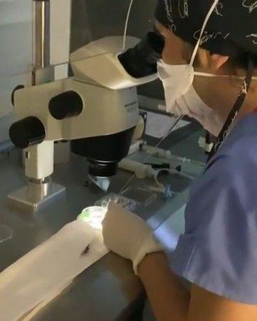 Son koronavirüs araştırmasından çarpıcı sonuçlar