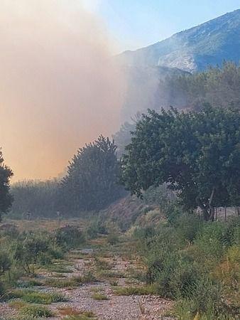 Ormanlık alandan dumanlar yükseliyor
