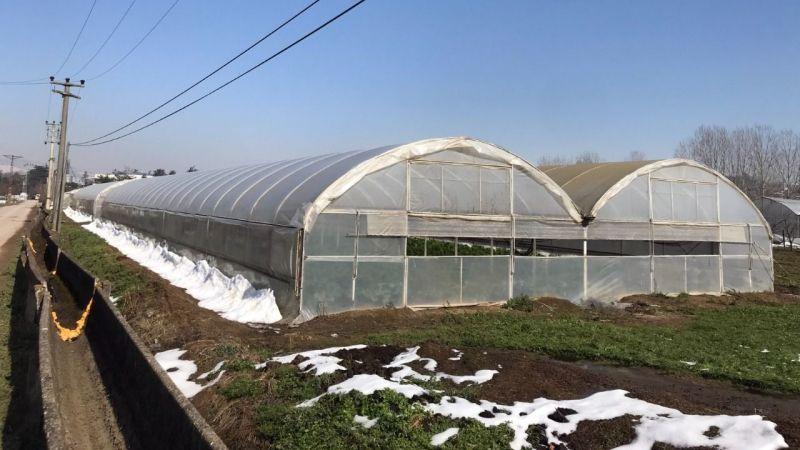 Büyükşehir'in sera desteği çiftçilerin yüzünü güldürdü