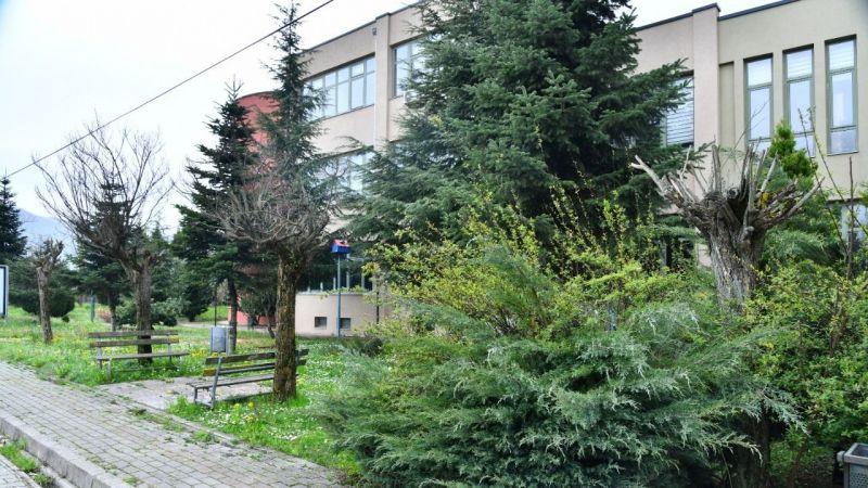 Hastalıklı meyce ağaçları rehabilite edilecek