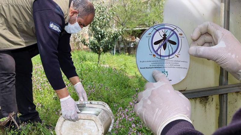 Büyükşehir'den sivrisinekle mücadele