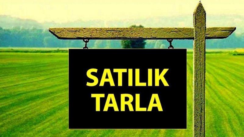 Karamürsel'de mahkemeden satılık 3 bin 289 m² tarla