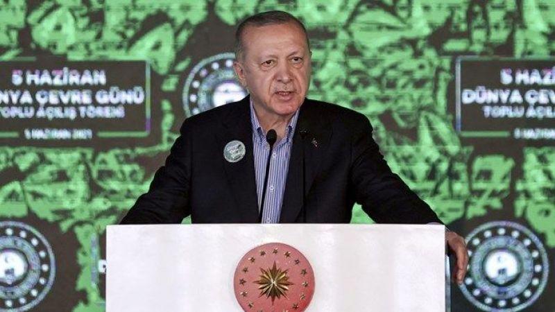 """Cumhurbaşkanı Erdoğan'dan müsilaj talimatı: """"Bu beladan kurtulacağız"""""""