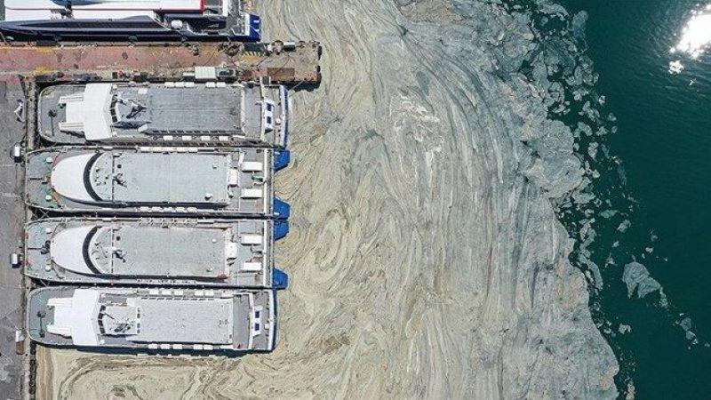 Müsilaj için plan yapıldı: Marmara nasıl kurtarılacak?