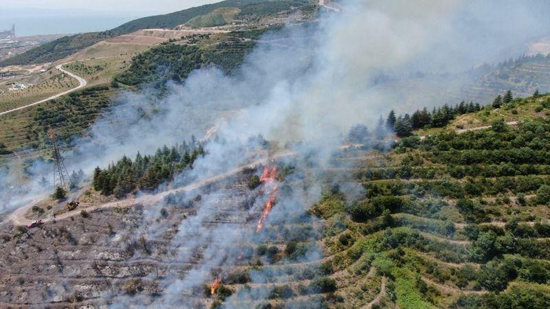 Kocaeli'deki orman yangının çıkış sebebi tespit edildi!