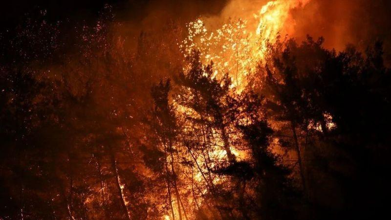 Bir gün içinde 30 ayrı noktada! Yangınların nedeni sabotaj mı?