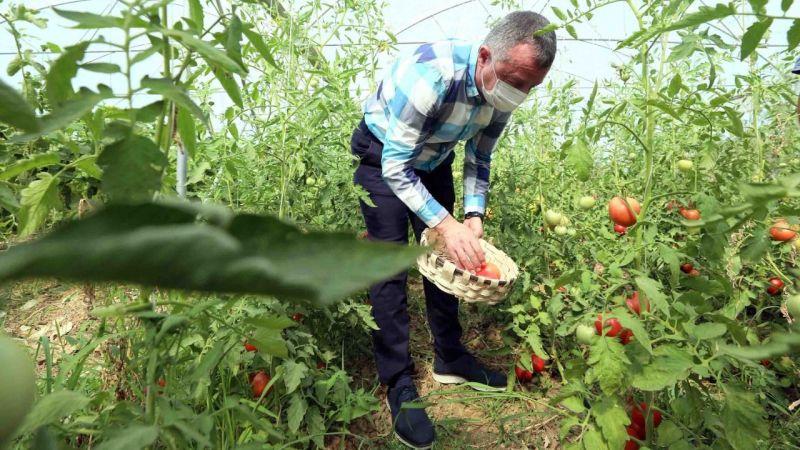 Bayraktar köyünde ilk hasadı Büyükakın yaptı