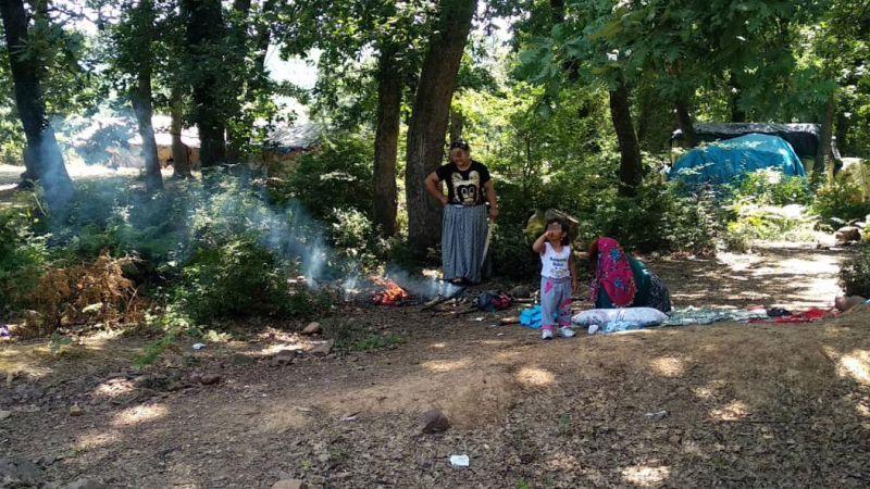 Yasak olmasına rağmen ormana girip ateş yaktılar...