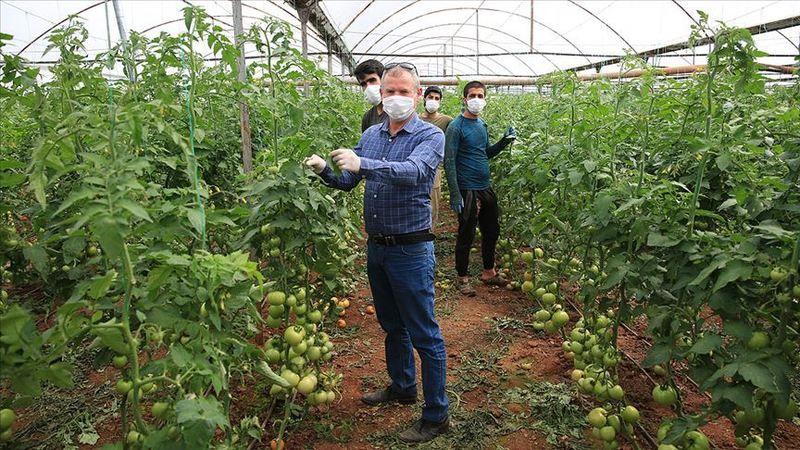 Pamukova dan Antalya'ya çiftçiler için sera gezisi..