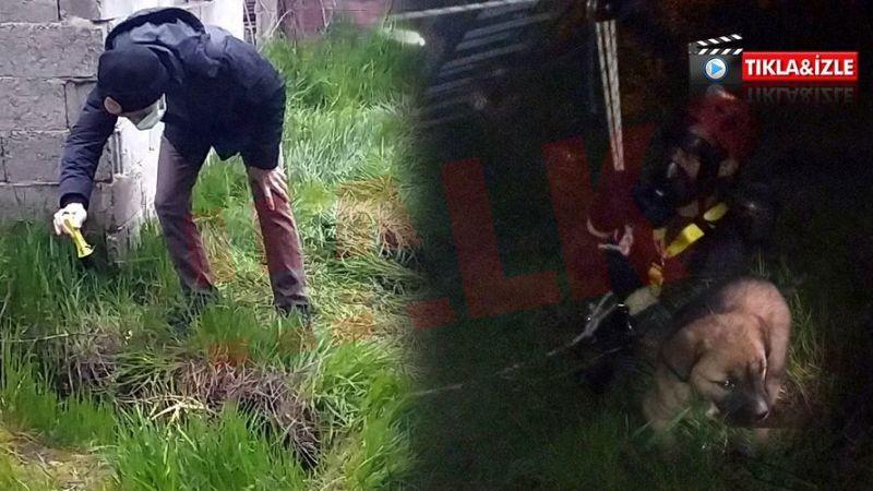 İtfaiye derin kuyuya düşen yavru köpeği böyle kurtardı