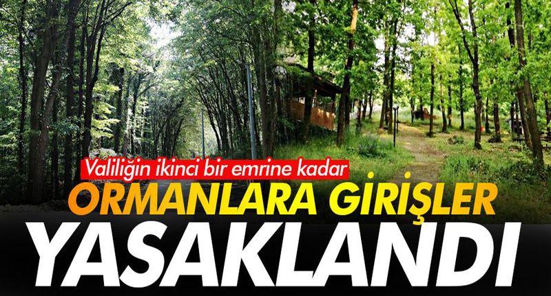 SON DAKİKA! Sakarya'da ormanlara giriş çıkışlar yasaklandı!