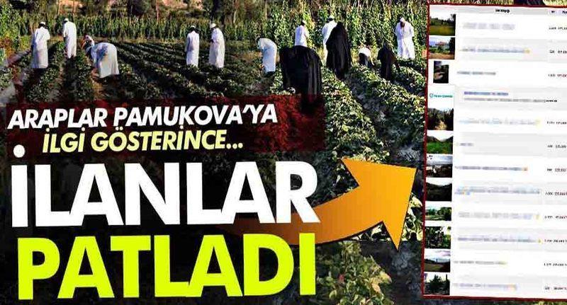 Araplar Pamukova'ya ilgi gösterince satış ilanları patladı!
