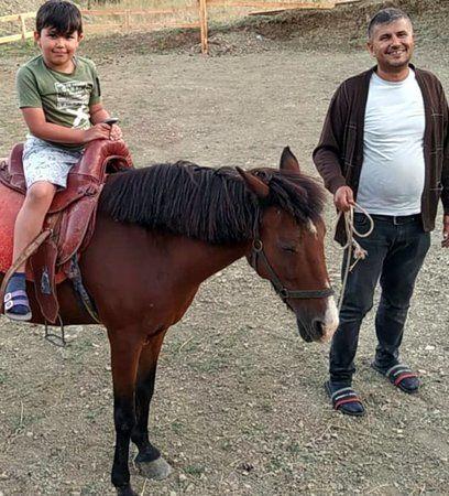 """Pamukova Kemaliye'de """"Doru """" isimli atla gezebilmek için sıraya giriyorlar.."""