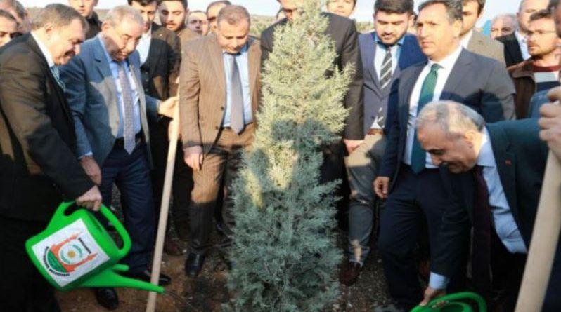 Bakanlar, Ağaç Dikim Kampanyasına Destek Verdi