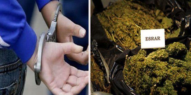 Urfa'da Uyuşturucu Operasyonu, 2 Gözaltı-(VİDEO)