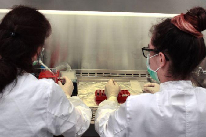 Zürih Üniversitesi ve Airbus, Uluslararası Uzay İstasyonu'nda minyatür insan dokusu üretiyor