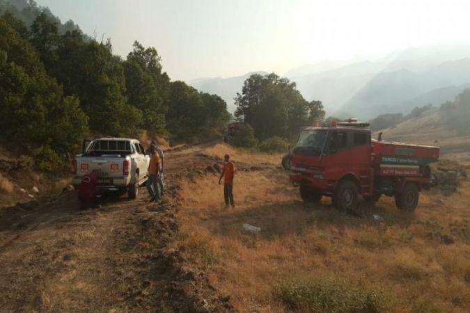 Tunceli'deki orman yangınları