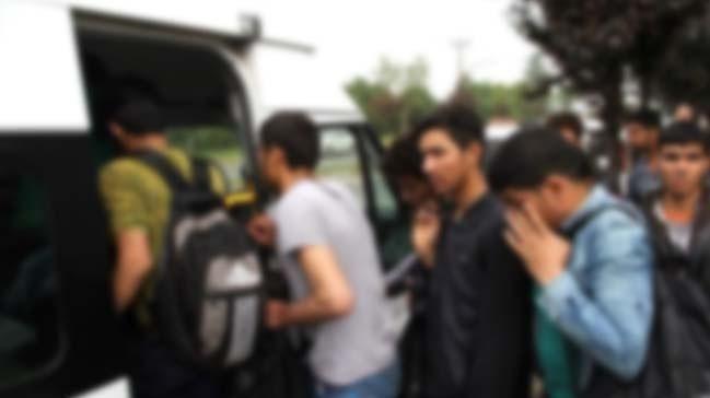 Şanlıurfa Düzensiz Göçmen Operasyonu:  Fıstık Ağaçları arasında yakalandılar