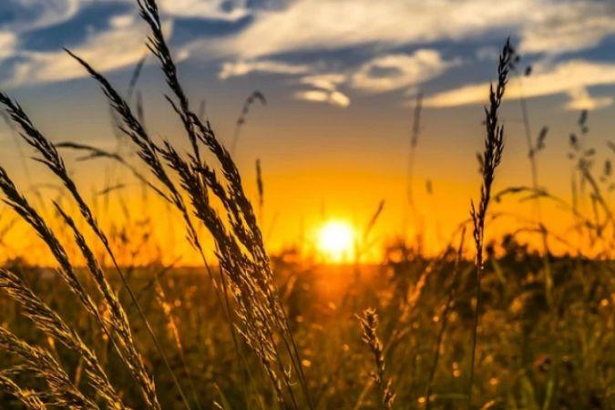 """""""CHP'li Belediyeler Tarımsal Kalkınma Zirvesi"""" başlıyor"""