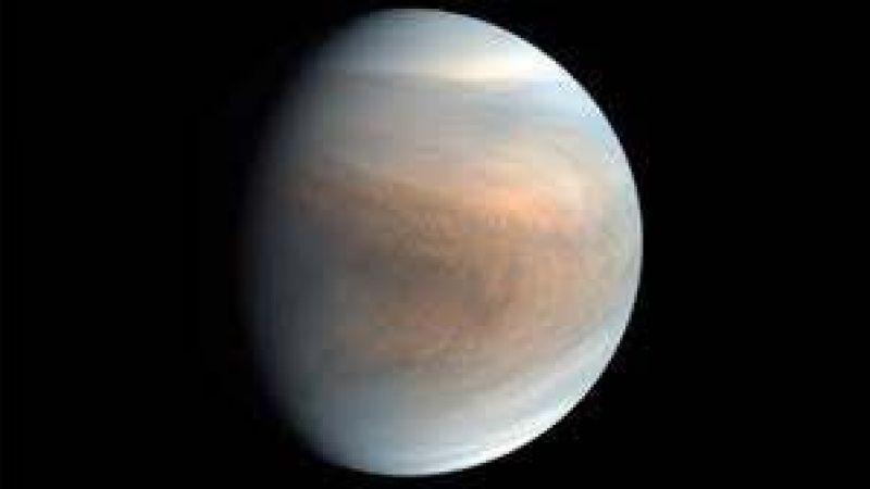 Venüs'te yaşam var