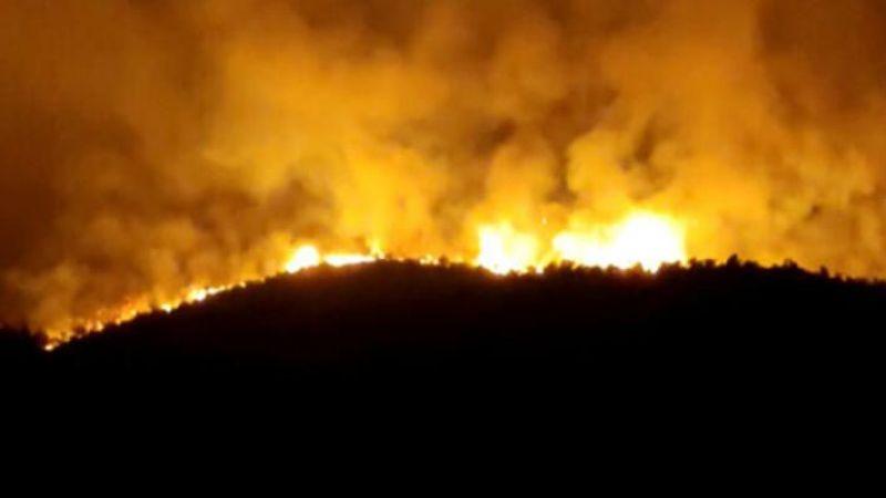 Hatay'da orman yangını büyüyor