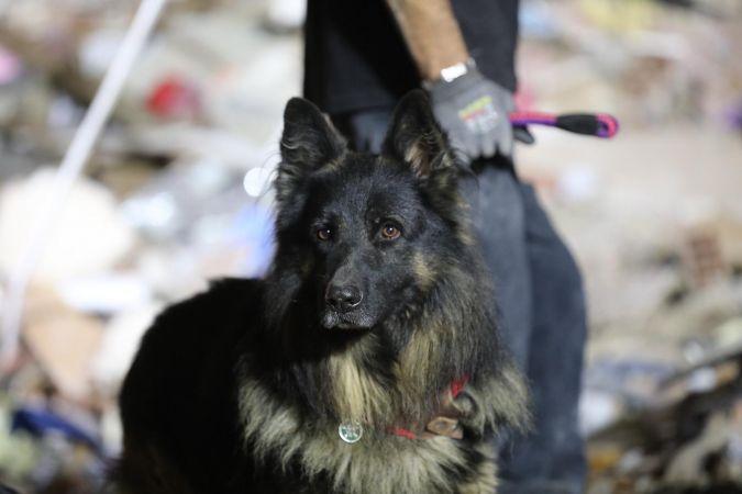 İzmir'deki depremin gizli kahramanları - B Gazete