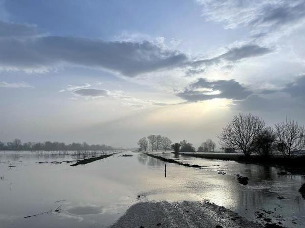 Baraj kapakları açılınca 30 bin dönüm araziyi su bastı