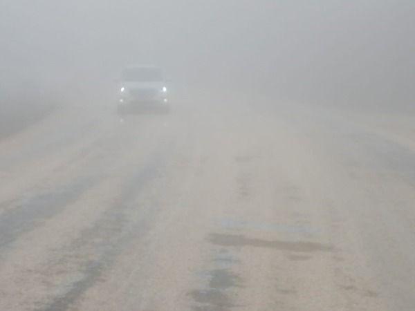 Bilecik'te sis etkili oluyor!