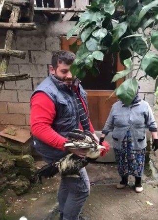 Trabzon'da horoz ''Anne'' diye bağırmaya başladı