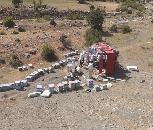 Bingöl'de arı yüklü kamyon devrildi