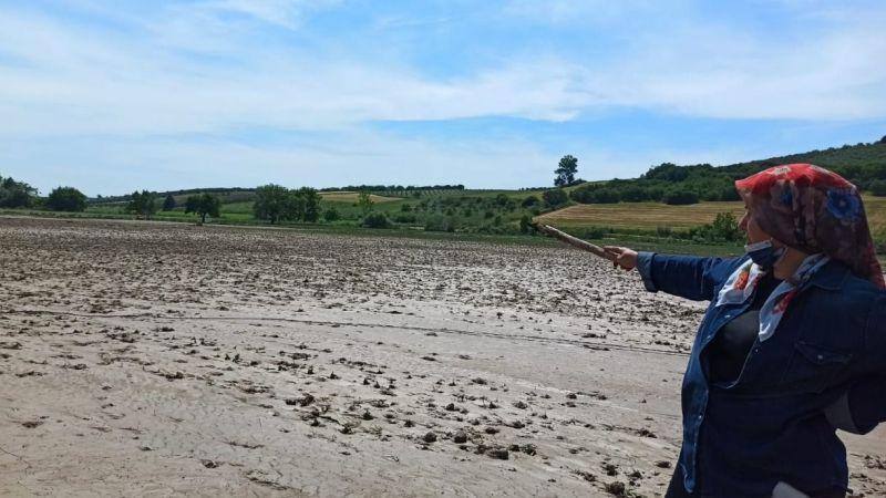 Sular altında kalan tarlalar için hasar tespiti