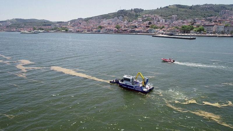 Bursa Mudanya'da deniz salyası temizliği başladı