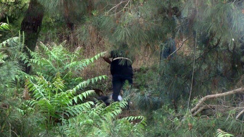 Kaybolan adam ağaca asılmış halde bulundu