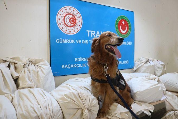 Edirne'de 117 kilogram uyuşturucu ele geçirildi