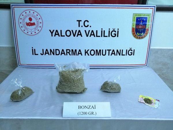 Yalova'da otobüsle uyuşturucu nakline jandarma engeli