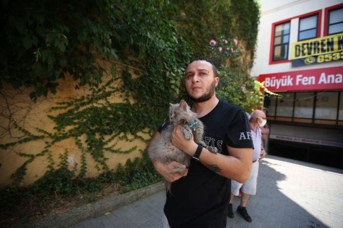Bursa'da yangında mahsur kalan kedileri itfaiye kurtardı