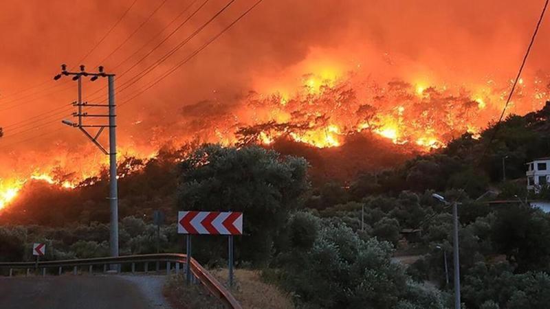 Bakanlar orman yangılarındaki son durumu açıkladı