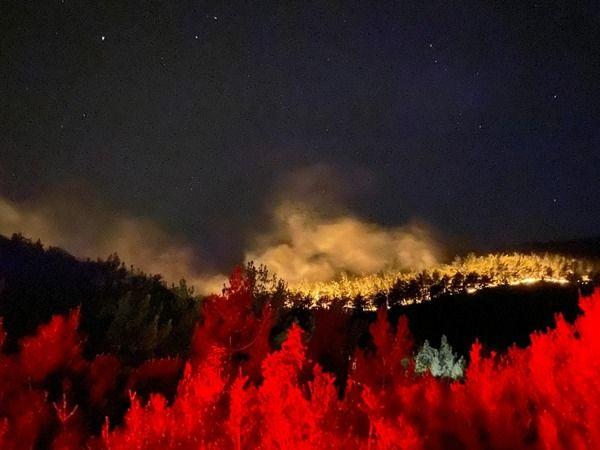 Yıldırım Belediyesi Muğla'da alevlerle mücadele ediyor