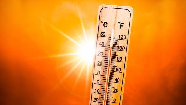 Dünyada 142 yılın sıcaklık rekoru kırıldı