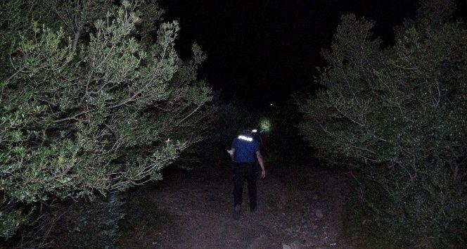 Bursa'da çiftlik yangını çıktı bekçiler fark etti