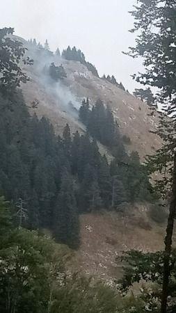 Bursa'da ormanlık alanda kısa süre içerisinde oluşan yangın havadan ve karadan yapılan müdahale sonucu kısa sürede söndürüldü. Yangın kısa süreli tedi