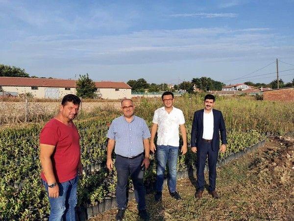 Tüm dünyada şifa kaynağı olarak bilinen aronya meyvesi Bursa'nın Mudanya ilçesinde de yetiştirilmeye başlanıyor.
