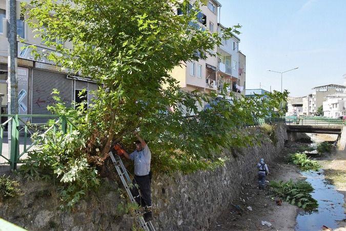 Yıldırım Belediyesi, ilçe genelinde dere temizliği çalışmalarına devam ediyor. Park ve Bahçeler Müdürlüğü ile Temizlik İşleri Müdürlüğü tarafından Sel